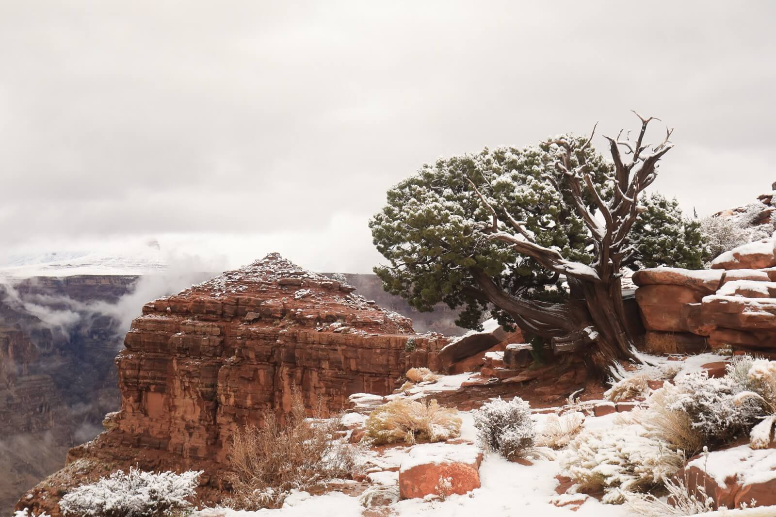 snow at guano point at grand canyon west